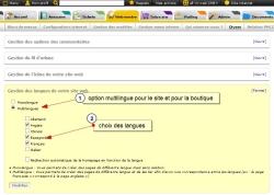 Option multilingue dans la Boutique, Fig. 1